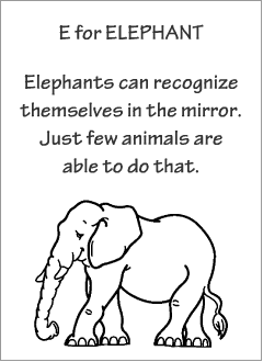 English printable resources: Elephant readers