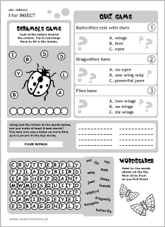English printable resources: Insect worksheets