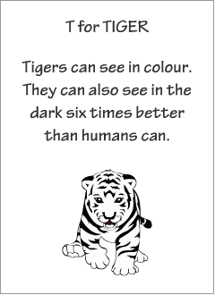 English printable resources: Tiger readers
