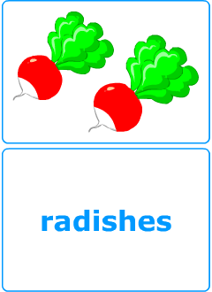 Teacher's resources: ESL flashcards