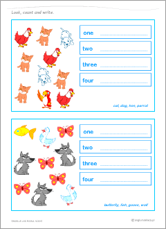 Worksheets to learn English singular and plural nouns