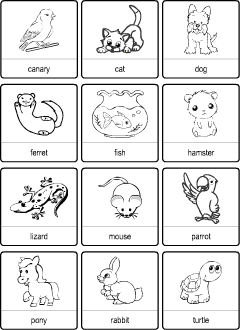 pets vocabulary for kids learning english printable resources. Black Bedroom Furniture Sets. Home Design Ideas